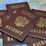 Как сделать проверку готовности гражданства РФ в 2019 году