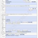 Правила заполнения бланка на заявление на загранпаспорт старого образца (на 5 лет)